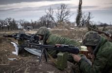 Quân đội Ukraine nâng cấp khu vực triển khai lực lượng ở Donbass