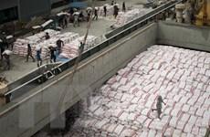 Thái Lan xuất khẩu trên 11 triệu tấn gạo trong năm 2018
