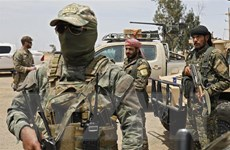 Syria: SDF chuẩn bị phát động chiến dịch cuối cùng chống lại IS