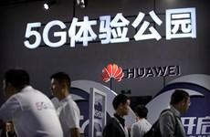 Huawei đe dọa kiện Cộng hòa Séc về cáo buộc gián điệp