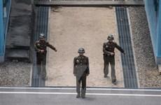 Tướng Mỹ: Không có thay đổi đáng kể trong năng lực quân sự Triều Tiên