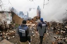 LHQ: Thỏa thuận hòa bình 2015 ở Đông Ukraine chưa được thực thi