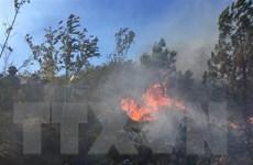 Lâm Đồng: Cháy lớn khiến tuyến đường đèo Prenn tạm bị phong tỏa