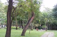 Thành phố Hồ Chí Minh kiên quyết lấy lại mặt bằng Công viên 23/9