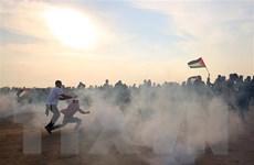 Đụng độ tái diễn tại Gaza làm nhiều người bị thương