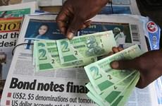 Zimbabwe chuẩn bị ra mắt thị trường hối đoái đầu tiên