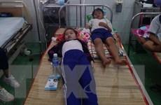 Cà Mau: Kỷ luật một số cán bộ sau vụ học sinh ngộ độc Fluor