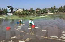 Trạm xăng nổi lật nghiêng gây sự cố tràn dầu trên sông Kinh Thầy