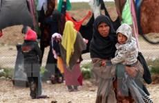11,7 triệu người dân Syria cần được hỗ trợ nhân đạo trong năm 2019