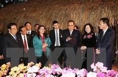 Đoàn đại biểu Triều Tiên tham quan mô hình trồng lan ở HTX Đan Hoài