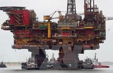 Giới phân tích bi quan về triển vọng giá dầu trong năm 2019