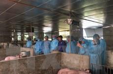 Quảng Ninh lập hàng loạt chốt kiểm dịch ở các 'cửa ngõ' tỉnh