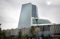 ECB hạ dự báo tăng trưởng Eurozone, giữ nguyên lãi suất thấp kỷ lục