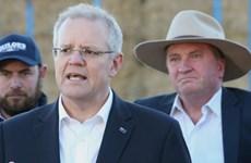 Australia: Tỷ lệ ủng hộ chính phủ liên minh tiếp tục giảm