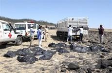 Mexico xác nhận có công dân trên chuyến bay gặp nạn của Ethiopia