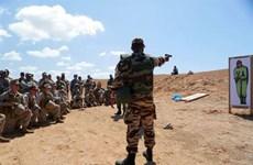 Maroc, Mỹ bắt đầu cuộc tập trận chung 'Sư tử châu Phi'