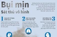 [Infographics] Vì sao bụi mịn được gọi là 'sát thủ vô hình'