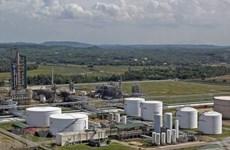 Công bố báo cáo tài chính kiểm toán của Lọc hóa dầu Bình Sơn