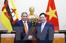 Phó Thủ tướng, Bộ trưởng Ngoại giao tiếp người đồng cấp Brunei