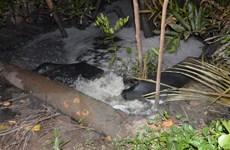 Đà Nẵng xem xét xử lý công ty xả trộm nước thải ra môi trường
