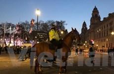 Hàng nghìn người Anh biểu tình phản đối trì hoãn Brexit