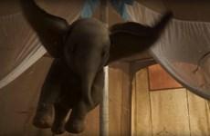 Chú voi 'Dumbo' phiên bản người đóng soán ngôi đầu của 'Us'