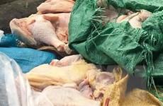 Hà Nội: Phát hiện 35kg thịt gà bốc mùi tại trường tiểu học Chu Văn An