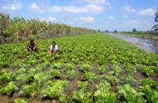Cục Bảo vệ thực vật củng cố thêm chứng cứ loại bỏ hoạt chất Glyphosate