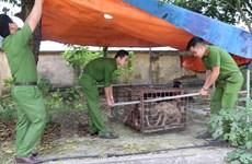 Vụ cháu bé bị chó cắn ở Hưng Yên: Giao đàn chó về cơ quan công an