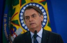 Brazil: Tỷ lệ tín nhiệm Tổng thống Bolsonaro giảm sau 3 tháng