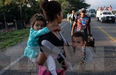 Lầu Năm Góc sẽ tìm địa điểm có thể chứa hàng nghìn trẻ di cư
