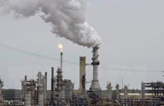 Giá dầu giảm trước đồn đoán về khả năng OPEC sắp nâng sản lượng