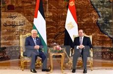 Ai Cập ủng hộ Palestine tìm kiếm một giải pháp chính trị