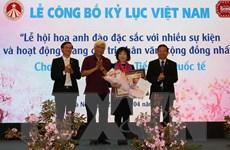 Lễ hội hoa anh đào Hà Nội được xác lập kỷ lục Việt Nam