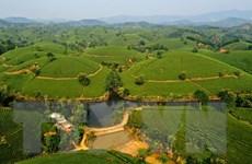 Khai thác du lịch nông nghiệp - dòng sản phẩm chủ đạo của Việt Nam