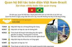 Dấu mốc quan trọng trong quan hệ đối tác toàn diện Việt Nam-Brazil