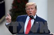 Thượng viện New York 'mở đường' tiếp cận hồ sơ thuế của ông Trump