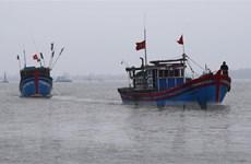 Việt Nam quan ngại sâu sắc về việc Indonesia phá hủy tàu cá Việt Nam