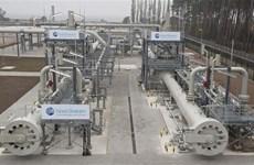 Hungary cân nhắc nối lại hoạt động mua khí đốt từ Nga