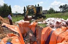Đồng Nai: Tiêu hủy hơn bốn tấn thịt lợn nhiễm dịch tả lợn châu Phi