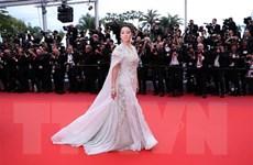 Các người đẹp thả dáng trên thảm đỏ LHP Cannes để làm gì?