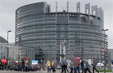 Hà Lan và Anh tiến hành bỏ phiếu bầu Nghị viện châu Âu 2019