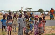 Nigeria: Tấn công tại vùng Tây Bắc khiến nhiều dân thường thiệt mạng