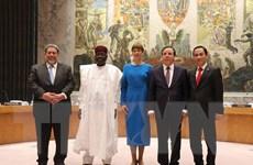 Báo Nga: Việt Nam sẽ là ủy viên xuất sắc của Hội đồng Bảo an