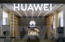 Trung Quốc cảnh báo hậu quả nếu Anh đóng cửa với Huawei