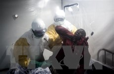 WHO: Dịch Ebola đang diễn biến phức tạp tại CHDC Congo
