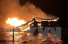 Quảng Bình: Cháy tàu cá đang neo đậu tại cảng Gianh