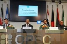 OPEC: Các quốc gia vùng Vịnh chưa có ý định tăng sản lượng dầu