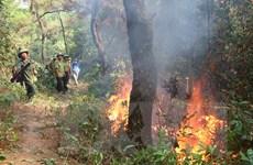 Phó Thủ tướng Vương Đình Huệ thị sát chữa cháy rừng tại Hà Tĩnh