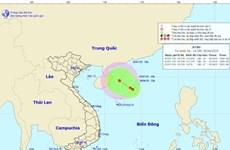 Xuất hiện vùng áp thấp trên vùng biển phía Bắc quần đảo Hoàng Sa